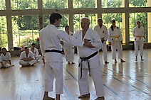 Karate Do Lehrgang 02.07.2016_108